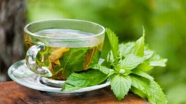 Green Tea Benefits: Health  & Side Effects