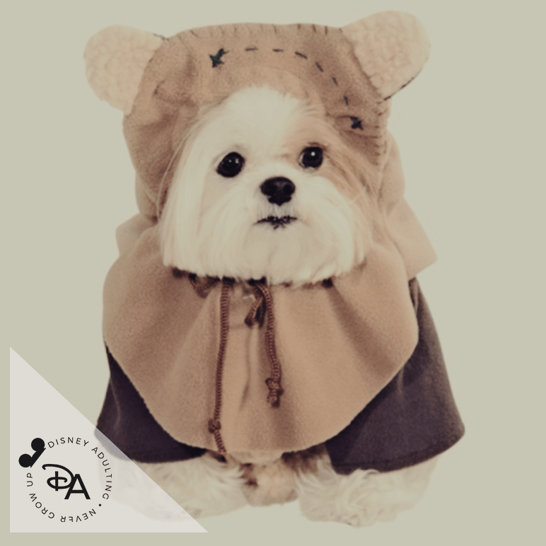 disney pet costumes & Disney Pet Costumes that are too Adorable for Words