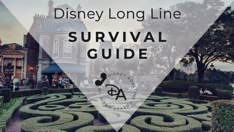 Disney Long Line Survival Guide
