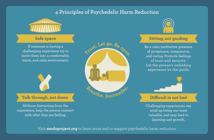 Psychedelic Harm Reduction