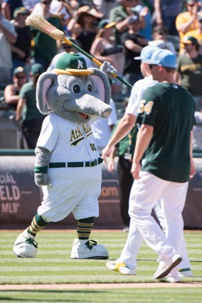 Oakland Athletics mascot Stomper holds a broom on the field after the Athletics defeated the New York Yankees, to sweep the Yankees in a four game series, at the Oakland Coliseum in Oakland, Calif., on June 18, 2017.