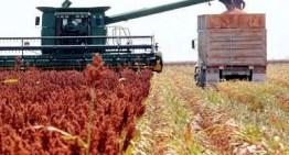 Piden vigilar  los instrumentos de medición del sector agroalimentario