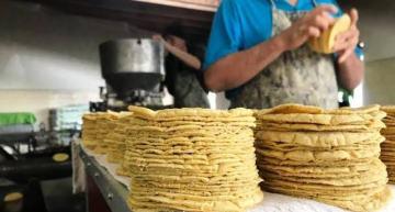 El precio promedio de la  tortilla, se mantiene sin  aumento: Profeco