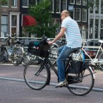 Don't bike and text, unless you are Dutch