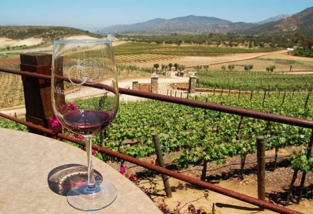 Resultado de imagen para vino ensenada