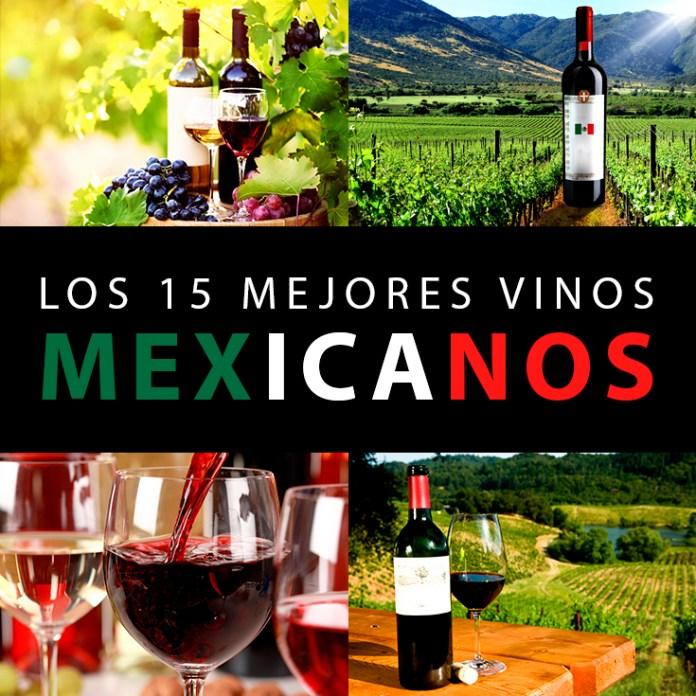 Image result for vinos rojos mexicanos