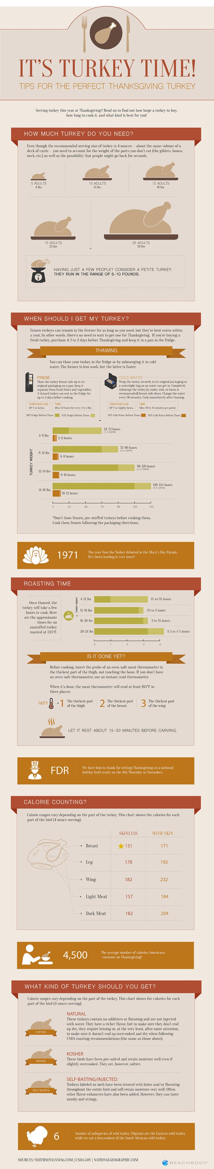 Thanksgiving Planning Guide Infographic
