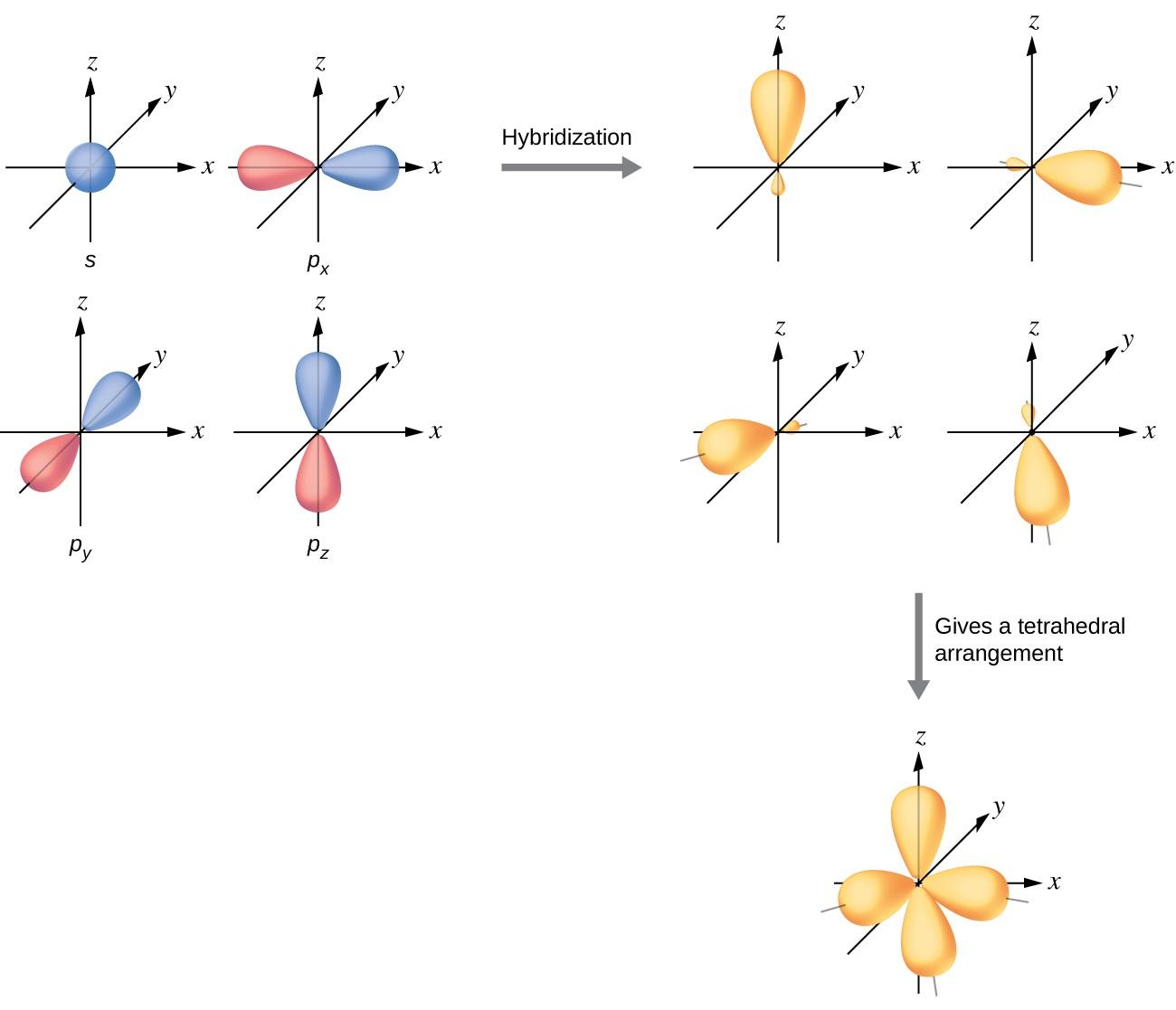 Worksheet Number 2 Orbital Diagrams