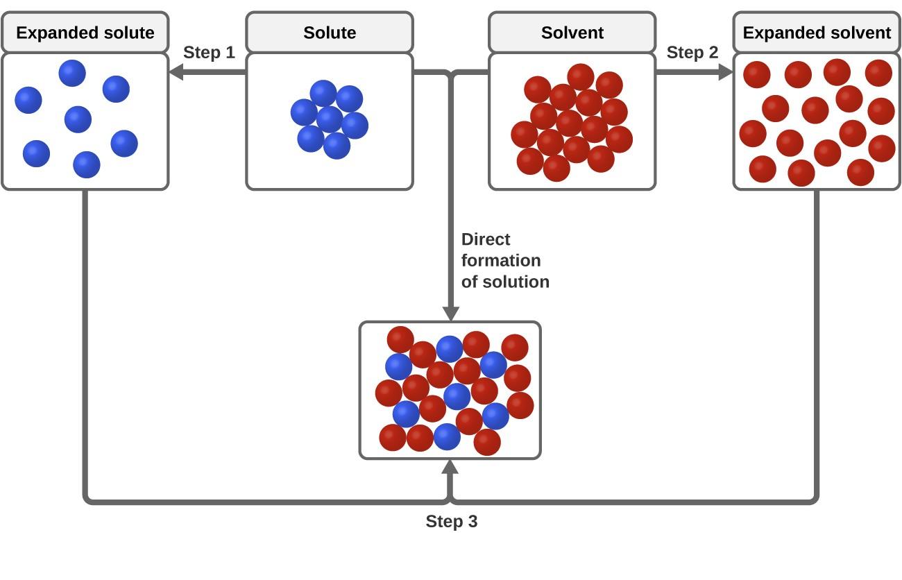 The Dissolution Process
