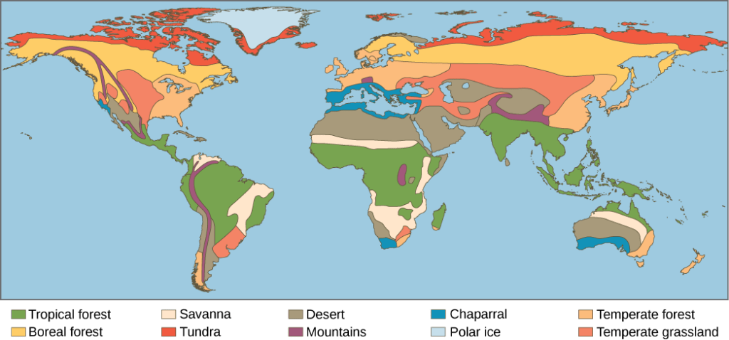 Map North America Tundra