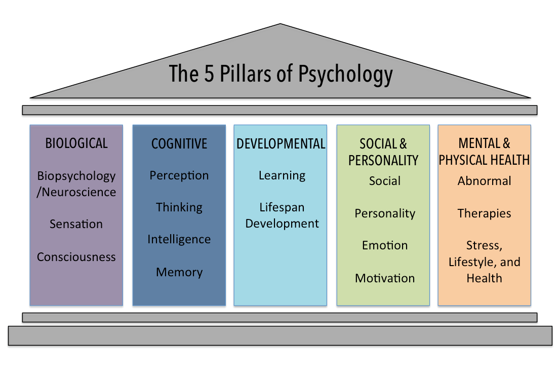 the five theories of psychology and child motivation Theories of motivation overview  at a simple level, it seems obvious that people do things, such as go to work, in order to get stuff they want and to avoid stuff.