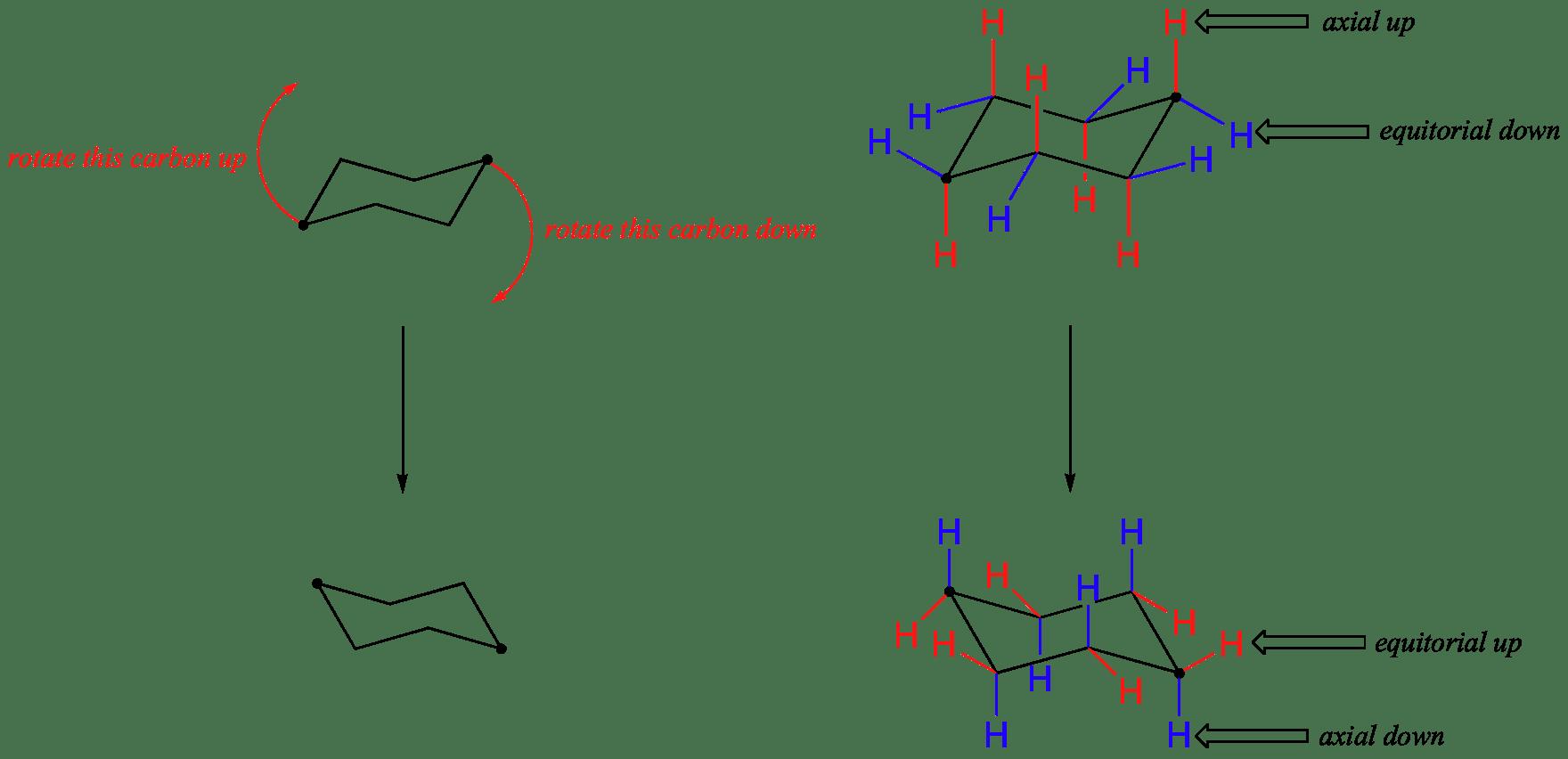 Axial And Equatiorial Bonds In Cyclohexane