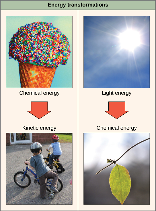 Energy Examples Chemical Kinetic