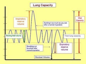 This is a graph of lung capacity at the various stages of the respiratory cycle, which is one inhalation followed by an exhalation. The events during this cycle are labeled, from left to right: resting tidal volume, inspiratory reserve volume, residual volume, expiratory reserve volume, total lung capacity, and vital capacity.