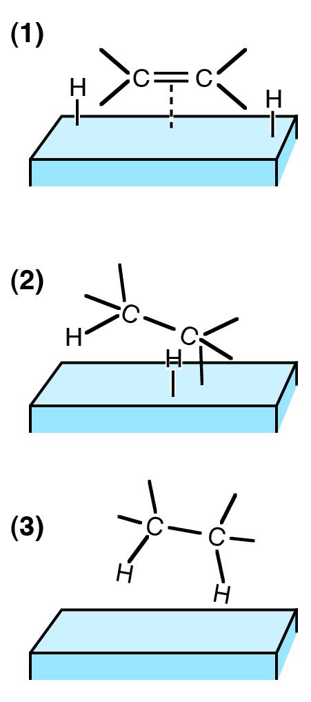 hydrogenation on catalyst - Hidrogenación catalítica de Alquenos