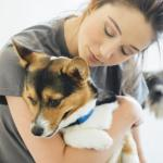 5 Vaccines Your Social Dog Should Be Current On