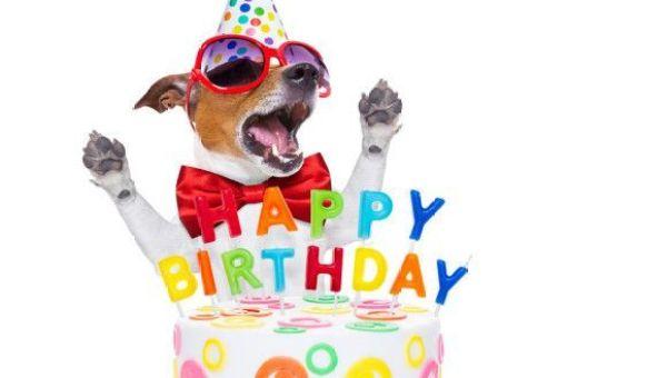 Image result for birthday celebration