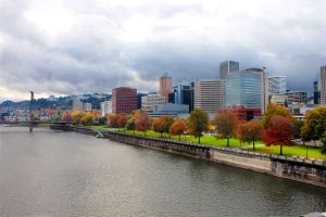 Portland waterfront with fall trees