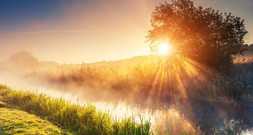 sunrise joy creation