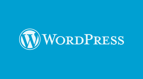 My First WordPress Experience
