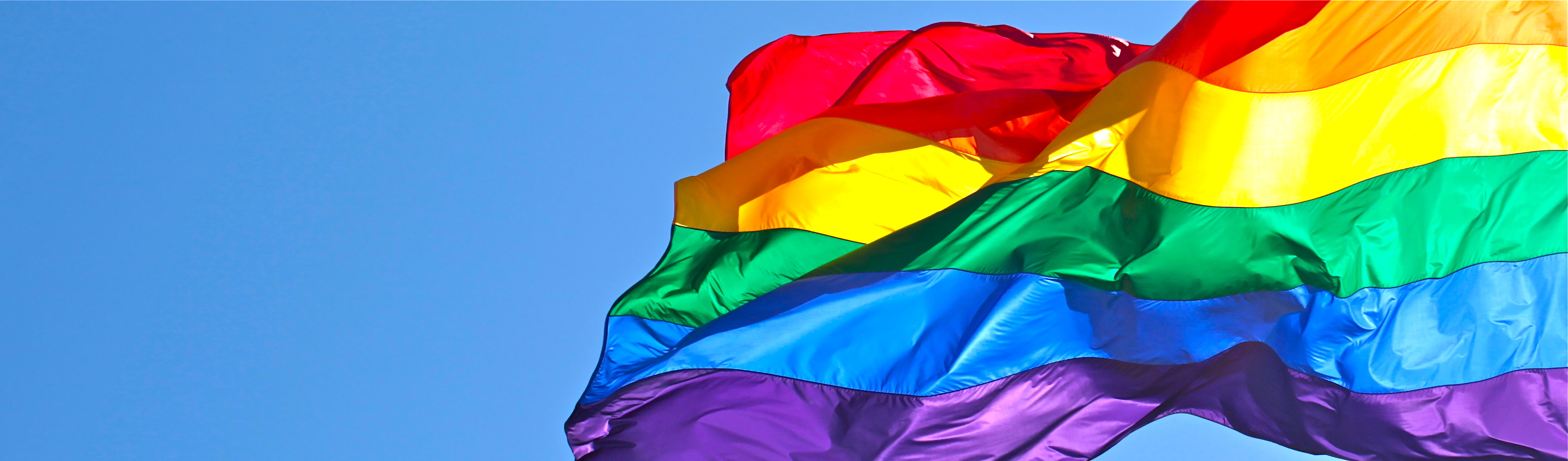 Image result for pride banner