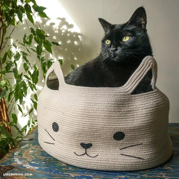 free cat tutorial # 5
