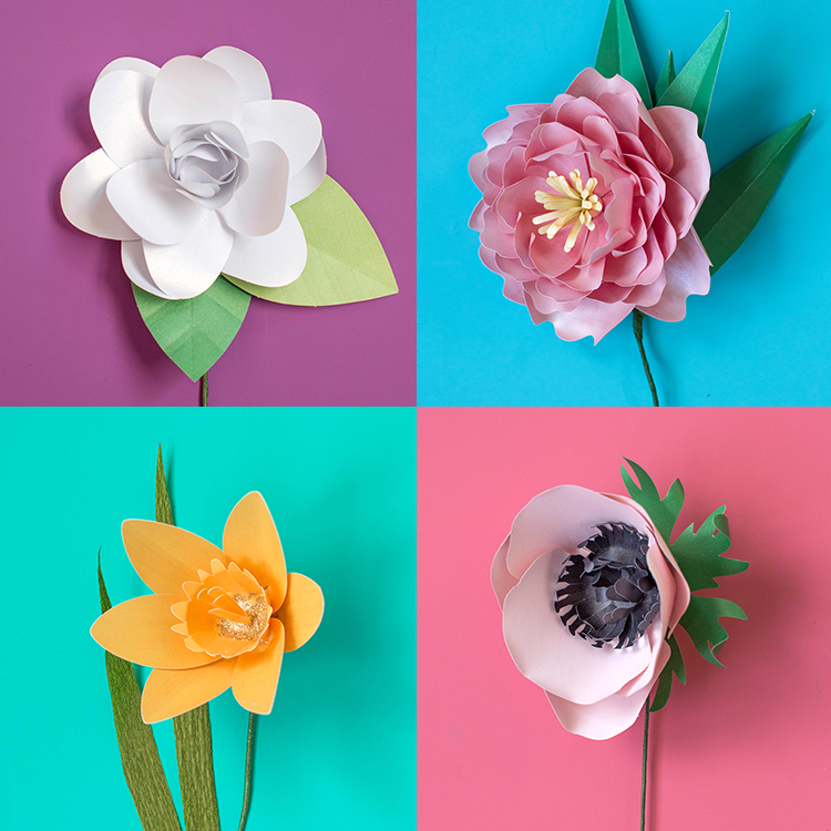 Announcing Paper Flower Kits in our Shop    Lia Griffith paper flower kits