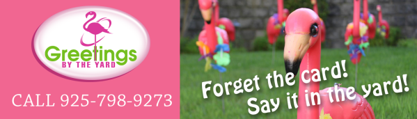 Call now 925-798-9273 for Greetings by the Yard, Flamingo Surprise, Cards by the Yard