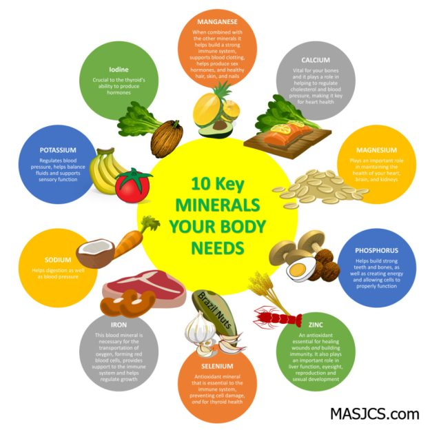 MINERALS YOUR BODY NEEDS