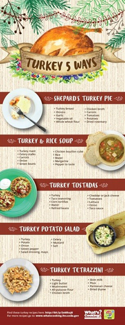 How To Incorporate Turkey Into Your Diet - Infographic