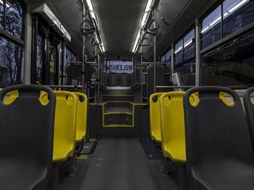transporte Vallarta