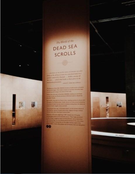 A preview of the exhibition. Photos: Anna Chen/Metro