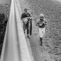 Last race of the day, Santa Anita Park.