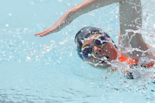 Growth Continues For Tiger Sharks