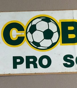 Cleveland Cobras Bumper Sticker