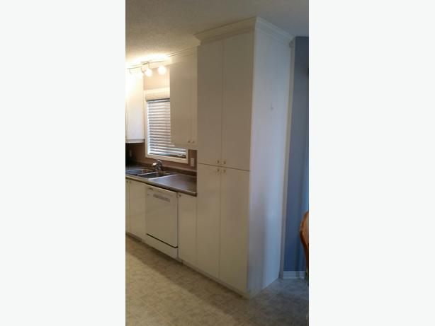 White Kitchen Cabinets, Countertop, And Sink For Sale
