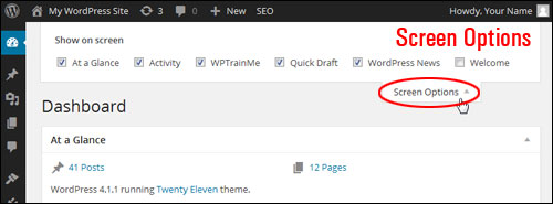 An Overview Of Your WP Admin Page