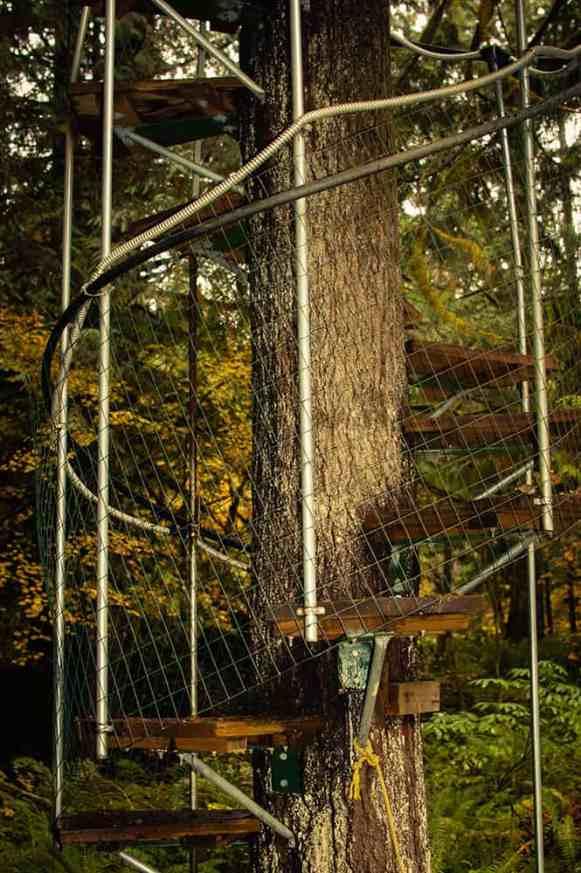 treehouseo