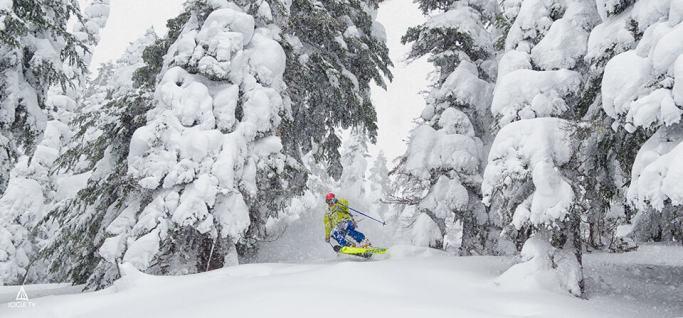 ski_stevens_powder-1