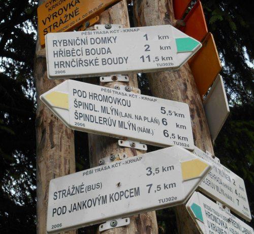 2014 Team Praha - Czech street signs - photo from Kathleen Winslow