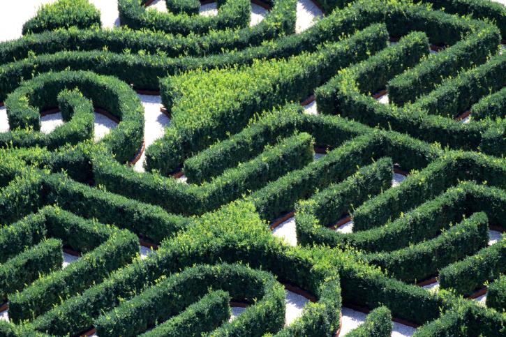 Amazon Above Ground Garden