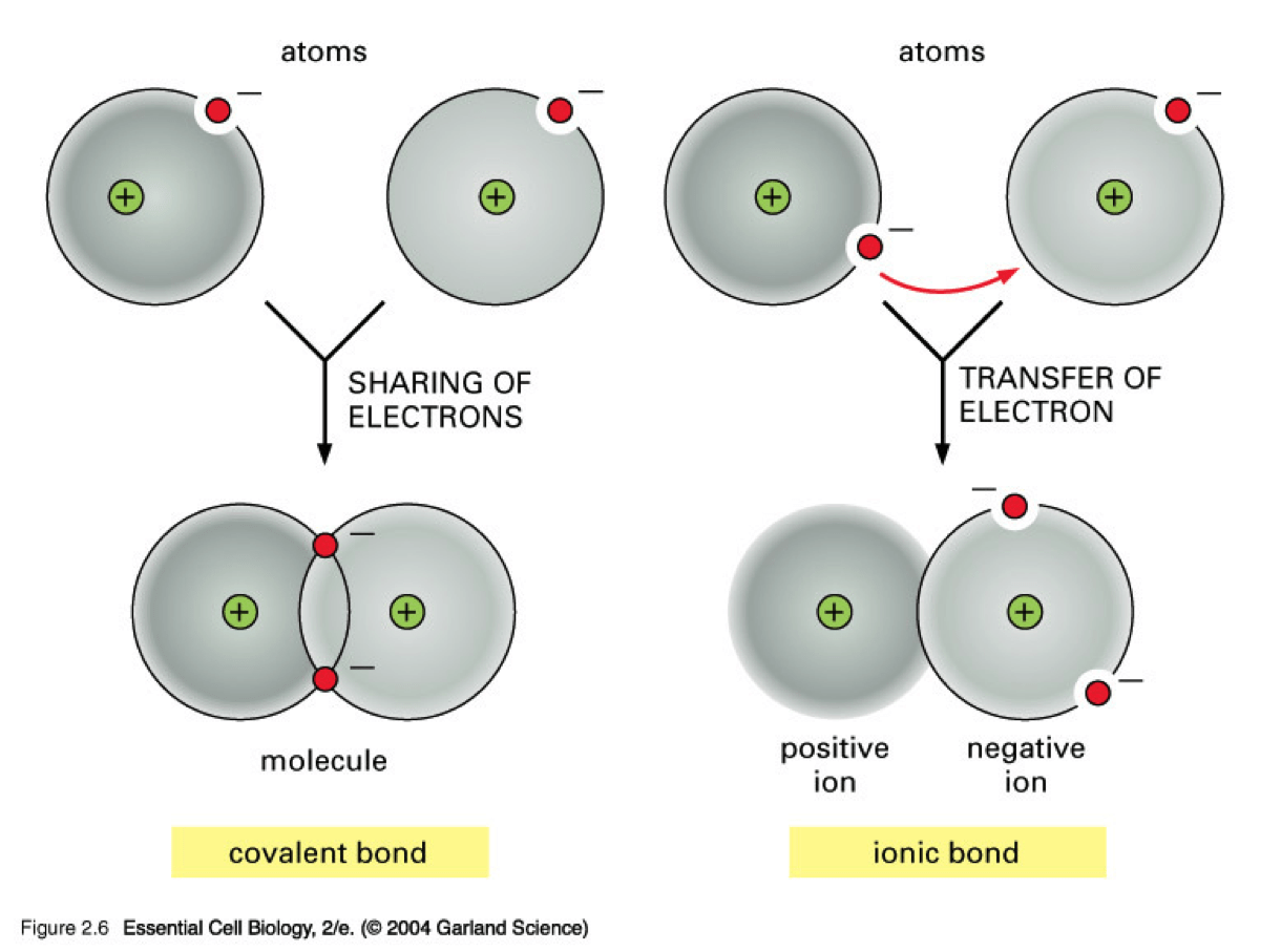 Ionic Bonds Lesson
