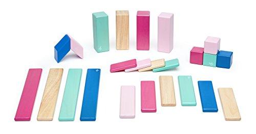 Tegu Magnetic  24 Piece  Wooden Block Set, Blossom.