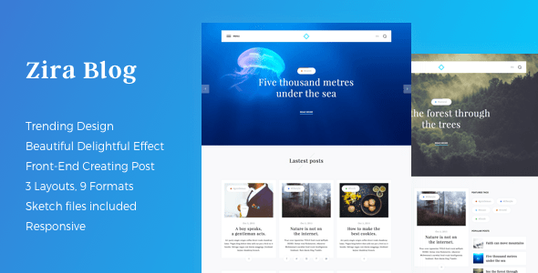Zira – Modern Looking Blogging Theme