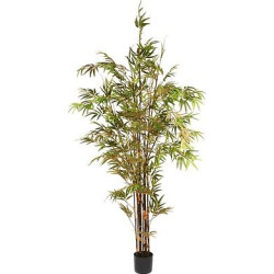 Artificial Potted Japanese Bamboo Tree Green (7ft) – National Tree Company