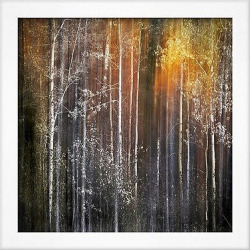 Art.com Nothing Gold Can Stay by Ursula Abresch – Framed Photographic Print, Soho White