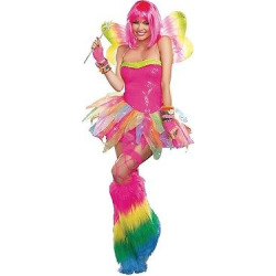 Women's Rainbow Fairy Costume – Large, Pink
