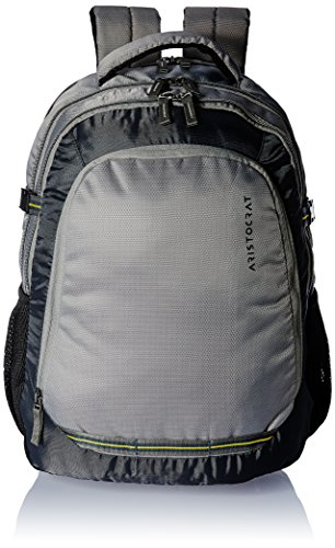 Aristocrat Gusto Fabric 30 Ltrs Grey Laptop Backpack (LPBPGUS2GRY)