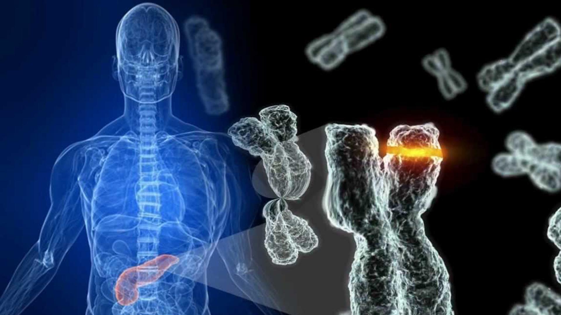 medicina regenerativa 1 - EL GRAN MILAGRO DE LA TERAPIA CELULAR CON INDUCTORES EN LA MEDICINA REGENERATIVA