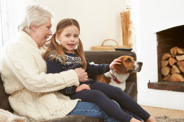 Compartir tiempo con la nueva mascota es fundamental para conocerla (iStock)